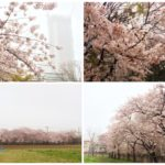 ちょい遅☆朝会 歓談メモ(2017/04/09)